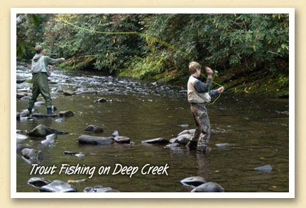 Trout fishing on Deep Creek near Bryson City