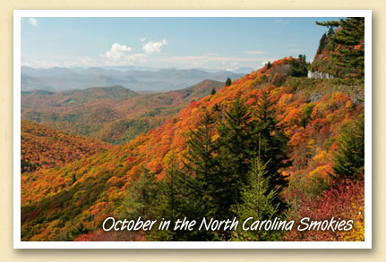 October Color in the North Carolina Smokies