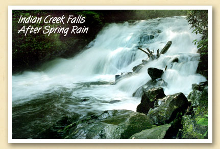 indian-creek-falls-spring